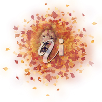 Double exposure of a lion head and autumn leaves