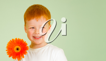 Royalty Free Photo of a Little Boy Holding a Flower