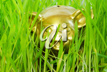 Royalty Free Photo of a Piggy Bank in Grass