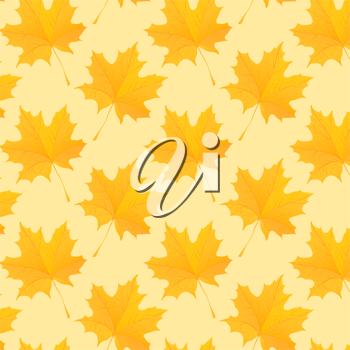 Royalty Free Clipart Image of Maple Leaves