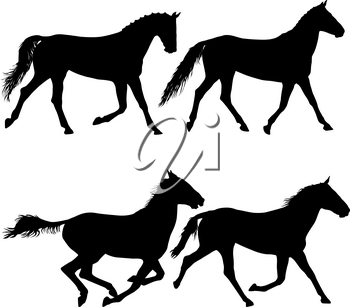 Set animal silhouette of black mustang horse illustration.