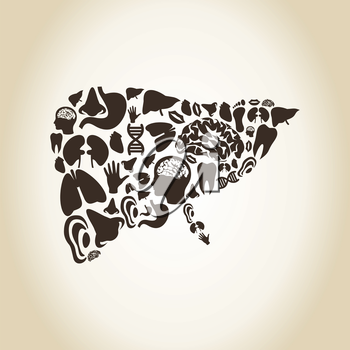 Liver made of body parts. A vector illustration