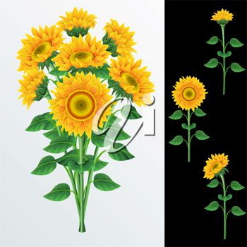 Royalty Free Clipart Image of a Background With a Bouquet of Sunflower and a Black Border With Sunflowers
