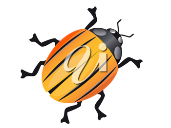 Royalty Free Clipart Image of a Colorado Beetle