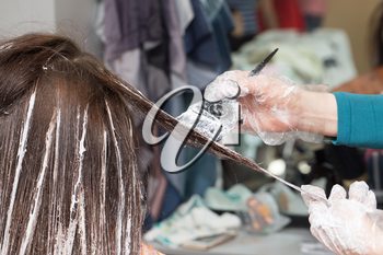 hair coloring in a beauty salon