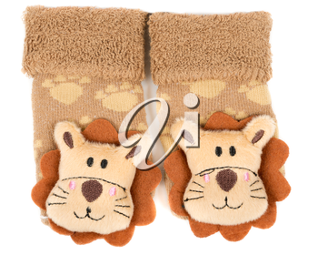 pair of children's sneakers with a muzzle of a lion. Isolate on white.