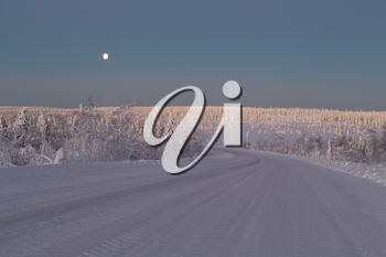 Snow-covered road in the Arctic. Russia, Murmansk region. Early morning, the moon in the sky and trees in the sunlight.