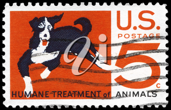 Royalty Free Photo of 1966 US Stamp Shows the Mongrel, Humane Treatment of Animals