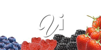 Royalty Free Photo of a Bunch of Berries