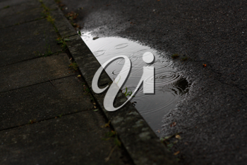 Royalty Free Photo of a Puddle