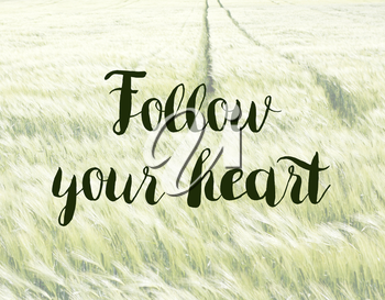 Follow your heart concept