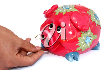 Royalty Free Photo of a Person Putting Money Into a Piggy Bank