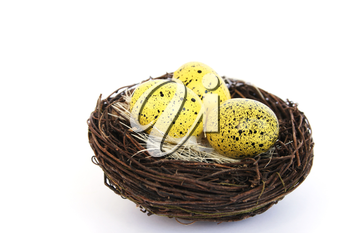 Royalty Free Photo of Eggs in a Nest