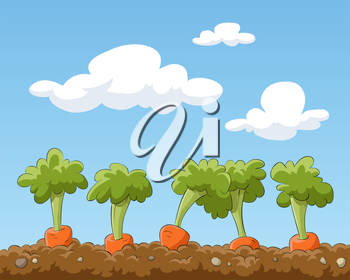 Royalty Free Clipart Image of a Carrots in the Garden