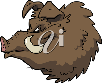 The head of a wild boar vector illustration