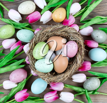 Nest filled with colorful eggs and pink tulips on weathered wooden boards for Easter background