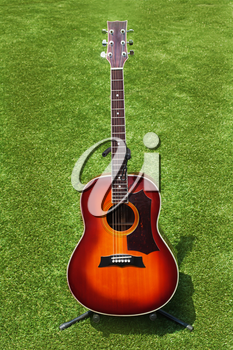 Acoustic guitar on background of green grass.
