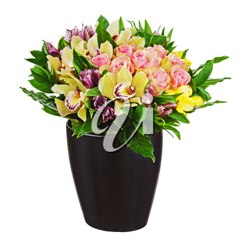 Floral bouquet of roses, lilies and orchids arrangement centerpiece in black vase isolated on white background. Closeup.