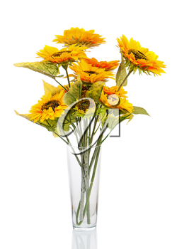 Composition from bright artificial sunflowers in glass vase isolated on white background. Closeup.