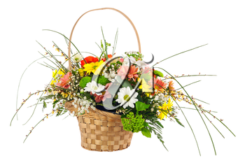 Flower bouquet from multi colored chrysanthemum and other flowers arrangement centerpiece in wicker basket isolated on white background.