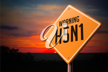 H5N1 on Warning Road Sign on Sunset Sky Background.