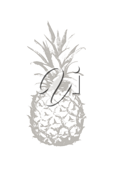 Pineapple pencil drawing icon. Tropical exotic fruit shape pattern. Outline icon. Vector illustration.