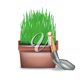 pot with growing grass and shoval isolated on white