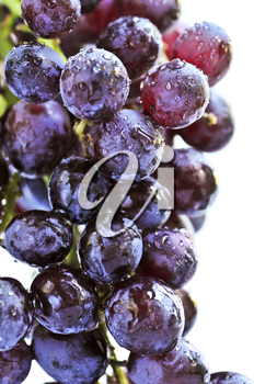 Cluster of red grapes close upi on white background