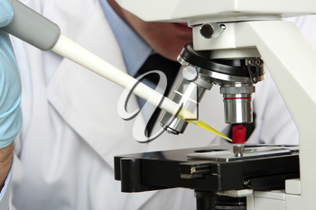 Scientist, pharmacist or chemist analyses a substance under the microsocpe.  Closeup focus to pipette tip.