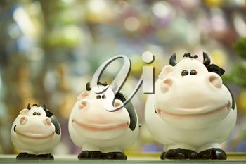 Image of three fat toy cows standing in line on shop window