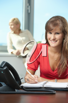 Young businesswoman sitting at desk in office, writing notes into personal organizer, smiling.
