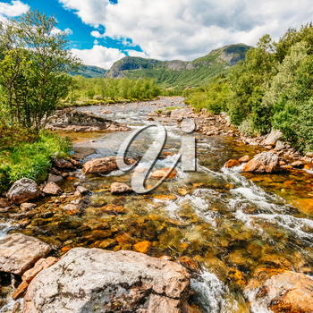 Norway Nature River. Sunny Summer Day, Landscape With Mountain, Pure Cold Water River, Pond