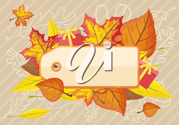 Tag label template for autumn sale. Fall sale, autumn leaves, autumn background, discount tag price, season promotion, offer advertising, retail shopping, fashion business illustration