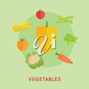 Set of vegetables vector. Flat design. Pepper, carrot, corn, cabbage, broccoli, asparagus, tomatoes illustrations for farm, shop, diet banners icons infographics Isolated on green background