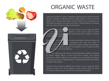 Organic waste being thrown in black bin having recycle sign, rotten apple, salad orange, poster and editable text sample in box vector illustration