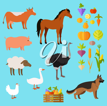 Domestic animals vector set of red cow, brown horse, pink pig, dark ostrich, light sheep, white goose and hen, black-brown dog near fruit and vegetables in and out of basket on blue background