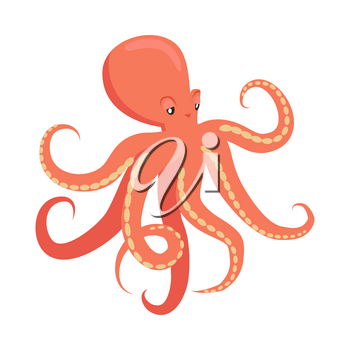 Red octopus cartoon character. Cute octopus flat vector isolated on white background. Aquatic fauna. Octopus icon. Animal illustration for zoo ad, nature concept, children book illustrating
