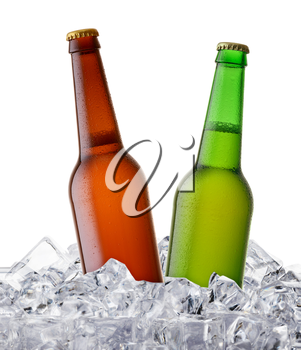 two beer bottles getting cool in ice cubes. Isolated on a white background.