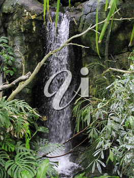 Stock Photo of a Waterfall In the Jungle