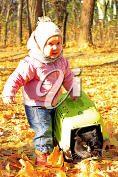 baby plays with her cat in cage in the Autumn leaves in the park