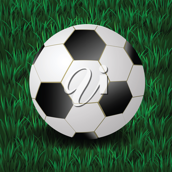 colorful illustration with football on a grass background for your design