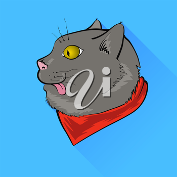 Grey Cat with Yellow Eyes Isolated on Blue Background.