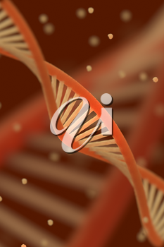 DNA chain macroshot. Highly detailed 3D illustration. Red key. Shallow DOF.