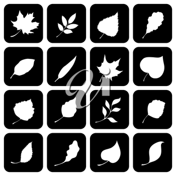Nature silhouettes. Black and white design.