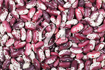 food background - many raw red spotted beans