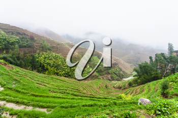 travel to China - view of wet terraced rice fields under clouds from Tiantouzhai village in area Dazhai Longsheng Rice Terraces (Dragon's Backbone terrace, Longji Rice Terraces) country in spring