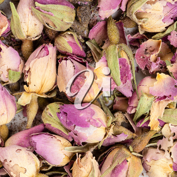 square food background - old dried rosebuds close up