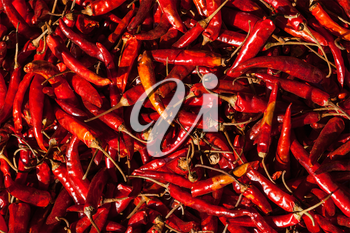 Red spicy chili peppers at asian market close up texture background