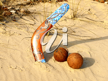Colorful boomerang and coconuts on a sand.