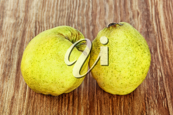 Two appetizing ripe quince on grunge wooden background taken closeup.